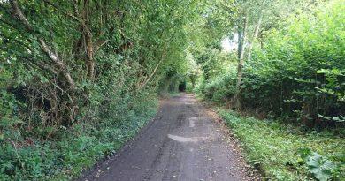 ROW511 - Ponds Lane