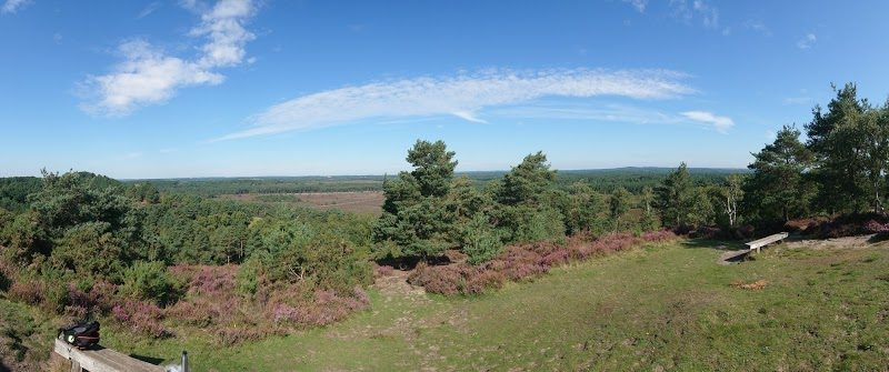 The view from Devil's Jumps, Surrey